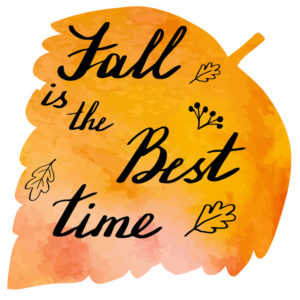 Fall Leaf Best Time Season Commercial Roofing Cleaning
